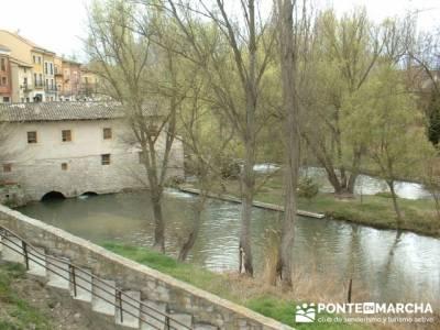 Ribera del Duero - Visita enológica a Peñafiel; senderismo madrid singles; viajes de montaña